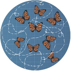 butterfly-collaborate.jpg